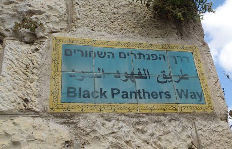 The Israeli Black Panthers Movement