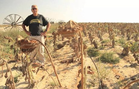 KKL-JNF: Making the Desert Bloom
