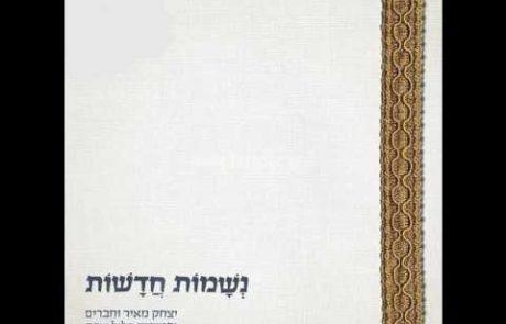 Yitzchak Meir & Friends: Carlebach Shalom Aleichem