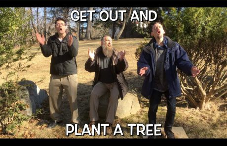 Shir Soul: Get Out and Plant A Tree