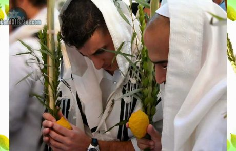 Sukkot: A Celebration for Every Nation