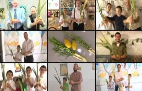 A Kids' Tour of the Sukkah Exhibit at Neot Kedumim